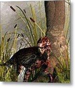Swamp Lycaenops Metal Print