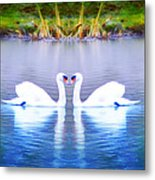 Swan Love Metal Print by Bill Cannon