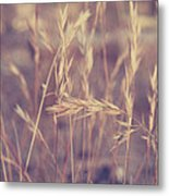 Swaying In The Soft Summer Breeze Metal Print