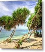 Swaying Palm Trees Metal Print