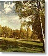 Swedish Landscape Metal Print