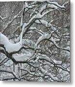 Swedish Winter Metal Print