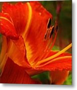 Sweet Fragrance Metal Print