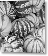 Sweet Sweet Dumpling In Black Metal Print