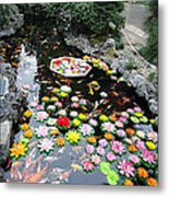 Swimming In The Pond Metal Print