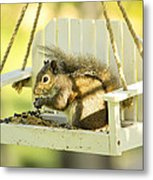 Swingin Squirrel Robber Metal Print