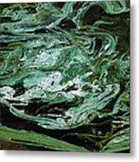 Swirling Algae Metal Print