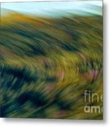 Swirling Field Metal Print