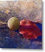 Sycamore Ball And Leaf Metal Print
