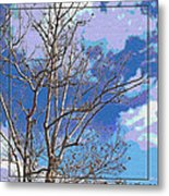 Sycamore Tree Branch Art Metal Print