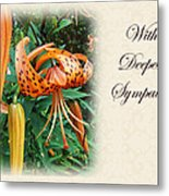 Sympathy Greeting Card - Wildflower Turk's Cap Lily Metal Print