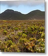 Table Mountain National Park Metal Print