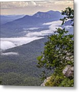Table Rock And Yellow Flowers Metal Print