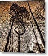 #tagstagram .com #me #implus_daily Metal Print by Pete Michaud