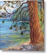 Tahoe Light Sugar Pine Point State Park Metal Print