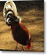 Tails Up Heads Down Metal Print