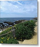Take A Walk With Me Metal Print