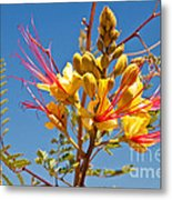 Tall And Bright Metal Print