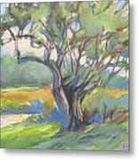 Tangled Tree Metal Print