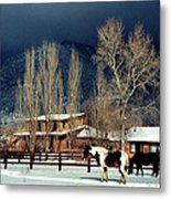 Taos Typical Metal Print