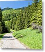 Tatra Mountains In Poland Metal Print