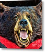 Taxidermy -  Black Bear Metal Print