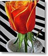 Tea Rose In Striped Vase Metal Print