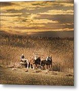 Team Of Four Horses Metal Print