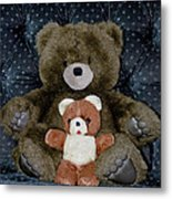 Teddy Elder Care Bear Metal Print