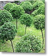 Temple Garden Trees Metal Print