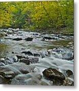 Tennessee Stream 6031 Metal Print