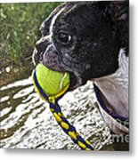 Tennis Ball Mist Metal Print