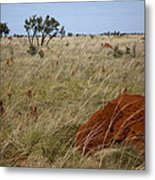 Termites Metal Print by Carole Hinding