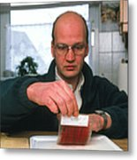 Testing For Bacteria Metal Print by Volker Steger