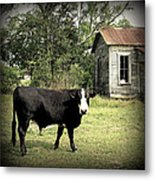 Texas Lawn Mower II Metal Print