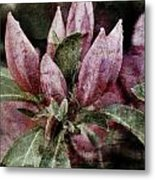 Textured Blooms 1 Metal Print