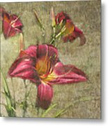 Textured Red Daylilies Metal Print