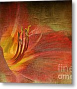 Textured Red Daylily Metal Print