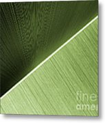 Patterns And Colors. Green. Metal Print