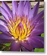 Thai Colours 3 Metal Print