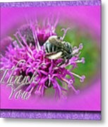 Thank You Greeting Card - Bumblebee On Ironweed Metal Print