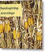 Thanksgiving Greeting Card - Dried Corn Stalks Metal Print