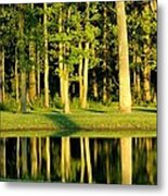 The 14th Green Metal Print