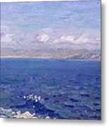 The Albanian Sea Metal Print