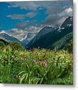The Alpine Meadows Metal Print