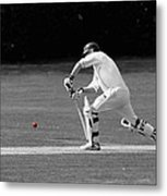 The Batsman Metal Print