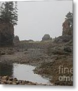 The Bay Of Fundy Metal Print