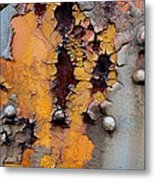 The Beauty Of Aging Metal Print