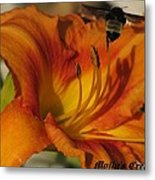 the Bees have it Metal Print