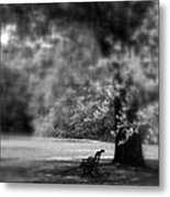 The Bench In The Park Metal Print